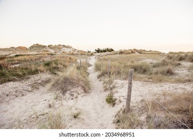 The sanddunes of Hatainville in Normandy