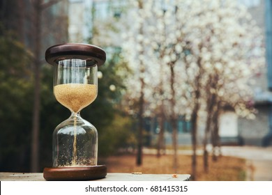 Sandglass or hourglass with cherry blossom trees in background