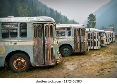 Sandon, British Columbia/Canada – August 24 2018:Old buses parked in the Kootenay ghost town of Sandon, BC.