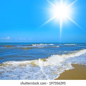 Sands of White White Sand
