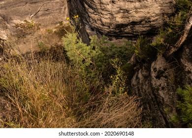 Sandstone in Europa, beautiful sommer Nature in Germany - Shutterstock ID 2020690148