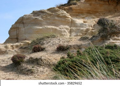 Sandstone rock outcrop above the sand dunes of the Dorset coast