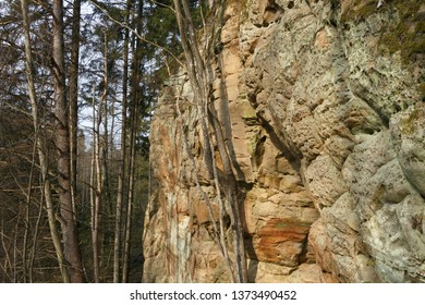 Sandstone rock in spring in Latvia. Langu cliffs at Lode behind Cesis in Latvia.