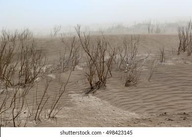 Sandstorm in the danakil desert in Ethiopia, africa