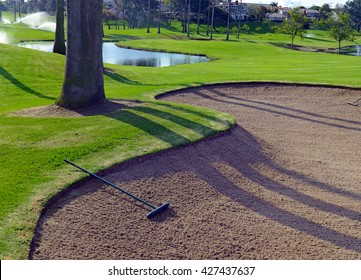 Sandtrap and Manicured green grass of fairway on a golf course