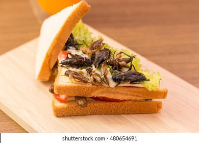 Sandwich made of fried insect meat and mozzarella cheese, mayonnaise and tomato, lettuce with orange juice presented on a wooden board. Close-up, Select focus. Horizontal image