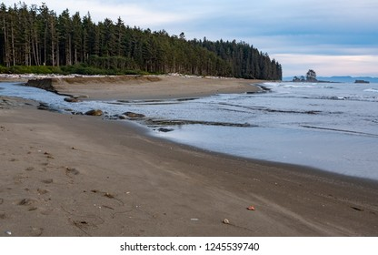 Sandy beach along the coast of the West Coast Trail on Vancouver Island, British Columbia, Canada