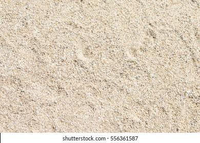 Sandy beach for background