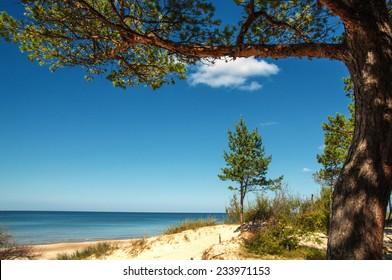 Sandy beach of the Baltic sea. Klaipeda,Palanga