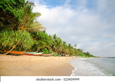 Sandy beach with colorful fishing boats at sunset. Mirissa. Sri Lanka