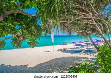 Sandy beach, the famous beach and beautiful.Sunbed with blue umbrella in  tropical  beach and Seashore screwpine, palm tree or coconut trees at Chaweng beach Koh Samui Surat, Thani, Thailand