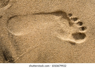 Sandy Beach footprint