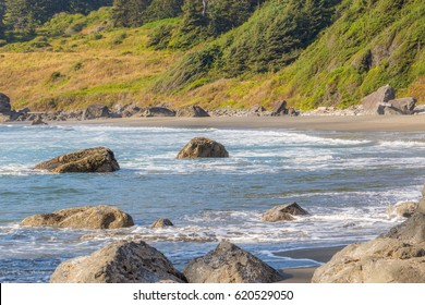 Sandy beach with large boulders on the edge of the forest.  Redwood national and state parks. California, USA