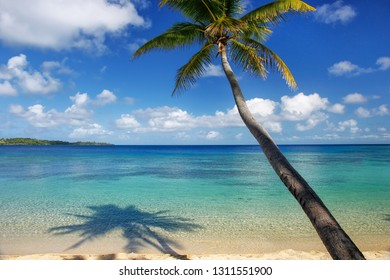 Sandy beach and leaning palm tree on Drawaqa Island, Yasawa Islands, Fiji. This archipelago consists of about 20 volcanic islands