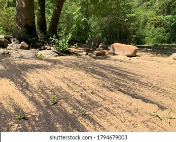 A sandy beach at Obed Wild and Scenic River created by sandstone. - Shutterstock ID 1794679003
