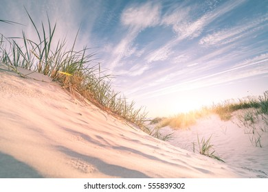 Sandy beach on a sunset in summer (Ventspils)