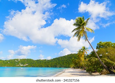 Sandy beach on a tropical island. Magens Bay has the most beautiful beach on the US Virgin Islands.