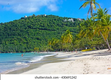Sandy beach on a tropical island in the morning. Magens Bay with gentle waves and  tall palms on St Thomas, US Virgin Islands.