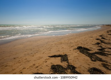 Sandy beach with people, waves and seaweed, Bibione, Veneto, Italy