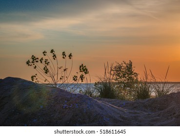 Sandy beach with plants at sunrise on Lake Michigan in Milwaukee, Wisconsin