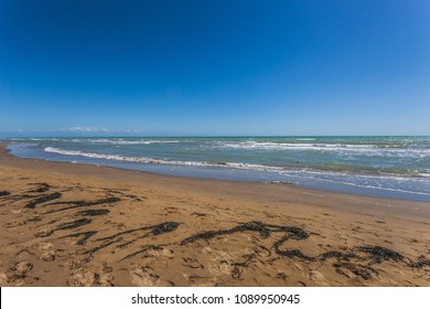 Sandy beach with seaweed carried by the backwash, Bibione, Veneto, Italy