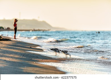 Sandy beach shoreline at Black Sea coast with seagulls drinking water at sunset. Beautiful sea landscape of Anapa resort with surfing waves splashing on seashore and woman on background.