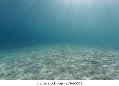 Sandy bottom, sun ray and fish in blue underwater