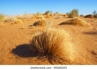 Sandy desert Karakum.