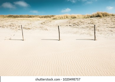 Sandy dunes on the coast of North sea in Noordwijk, Netherlands