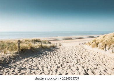 Sandy dunes on the coast of North sea in Noordwijk, Netherlands, Europe.