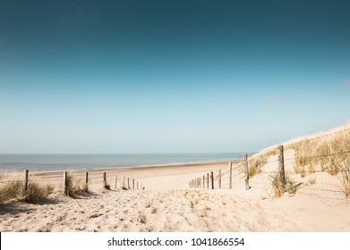 Sandy dunes on the coast of North sea in Noordwijk, Netherlands
