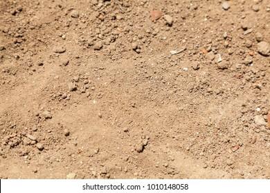 Sandy Loam Soil Composition