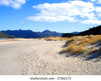 Sandy nature of Whangapoua Beach, Great Barrier Island, New Zealand
