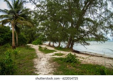 Sandy pass along the sea shore