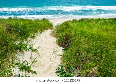 Sandy path to a beach and turquoise ocean.  The walkway goes through grassy sand dunes.
