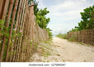 Sandy Path to Remote Tropical Caribbean Beach, in Florida