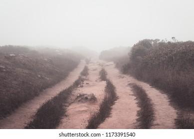 Sandy Path Vanishing into Fog