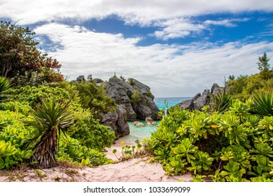 A sandy pathway leading to a small secluded beach on the South Shore in Warwick, Bermuda. Possible use in vacation or travel brochure design.