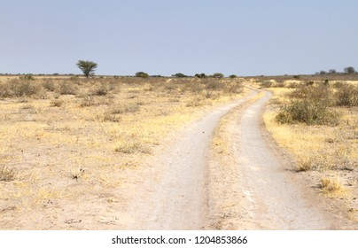 Sandy road in Botswana, driving through the Kalari desert