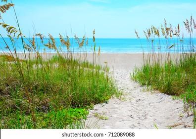 Sandy sand path through tropical sea oats down to a beautiful calm blue ocean beach on a sunny afternoon.