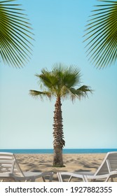 sandy sea coast with white sunbed and palm leaves, template concept resort holiday, vertical photo