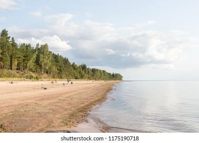 The sandy seashore in summer, sunny day. Latvia.