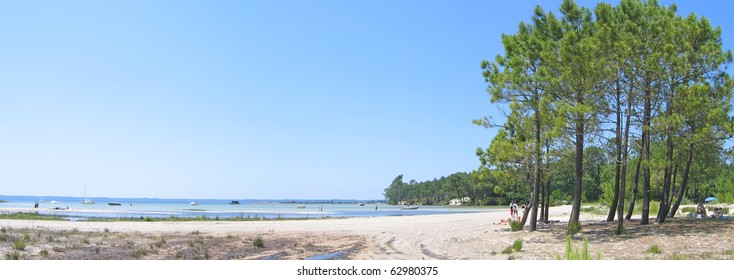 Sanguinet lake with big pines along the beach in the Landes - South west France - Panorama.