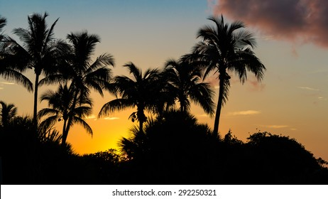 Sanibel Island Sunrise, Florida, USA, Color Image
