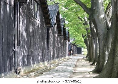 Sankyo Warehouse and zelkova trees