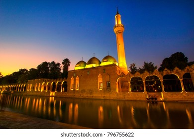 Sanliurfa landscape beautiful sunset fish lake Turkey. With mosque and reflections is best touristic destination of Sanliurfa.