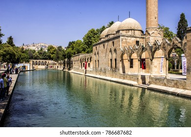 SANLIURFA, TURKEY - JULY 17: Unidentified visitors to the Holy Lake with sacred fish in Golbasi Park and Halil Rahman Mosque. July 17, 2017 in Sanliurfa, Turkey.