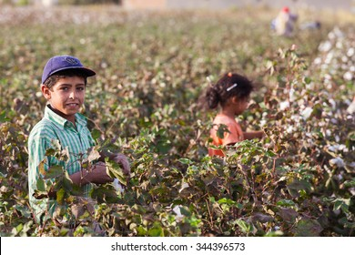 Sanliurfa,Turkey-October 25, 2011:Unidentified seasonal child workers work in very difficult conditions,They can not go to school  to work in the cotton fields.Harran plain near Syria border of Turkey