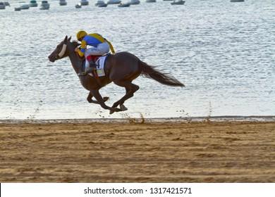 SANLUCAR DE BARRAMEDA, CADIZ, SPAIN - AUGUST 11: Unidentified rider race horses on Sanlucar de Barrameda beach on August 11, 2011 in Sanlucar de Barrameda, Cadiz, Spain.