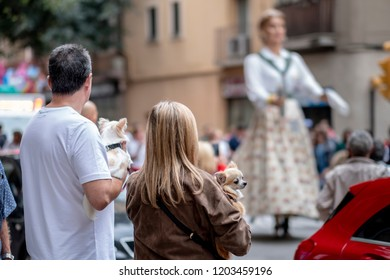 Sant Feliu de Llobregat, Barcelona / Catalonia - 10 12 2018: Traditional popular walk of the Catalan parties of giants and big heads made by associations.